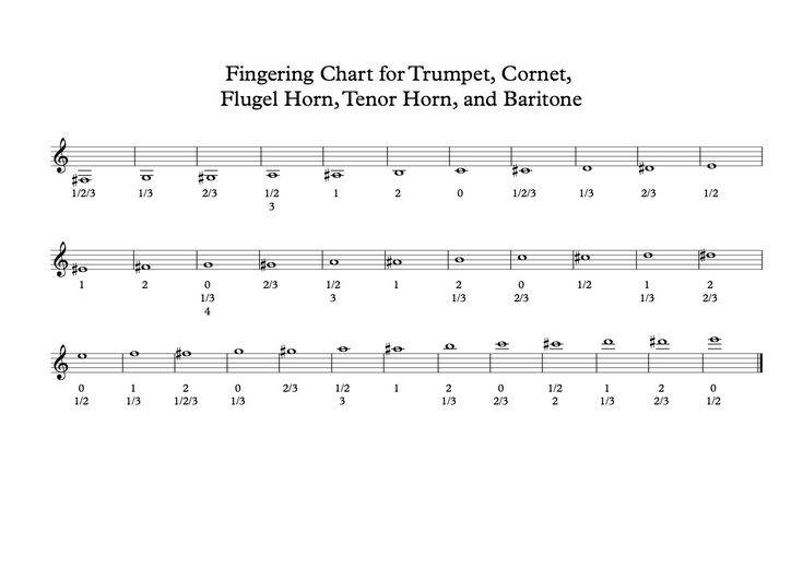 This blog covers a fingering chart for valved brass band instruments.