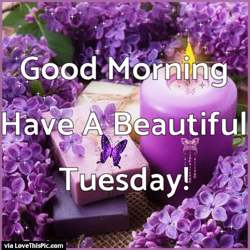 Good Morning Have A Beautiful Tuesday Gif Quote good morning tuesday tuesday…