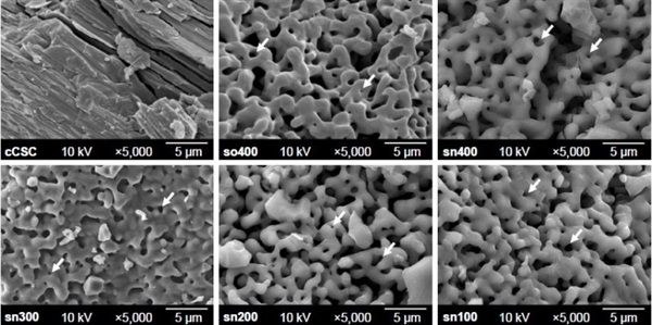 Dentaltown - A novel sol-gel-derived calcium silicate cement with short setting time for application in endodontic repair of perforations.