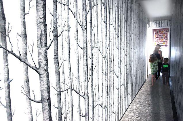 Christiane Lemieux 39 S Tree Lined Hallway