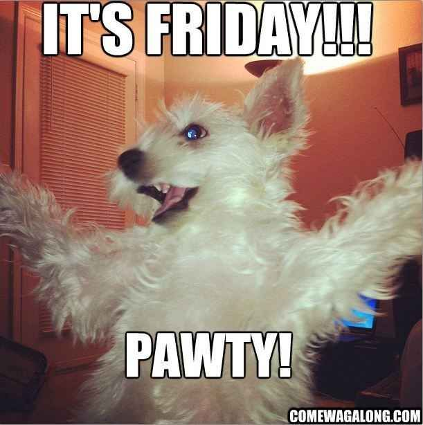 It's a Friday Pawty!