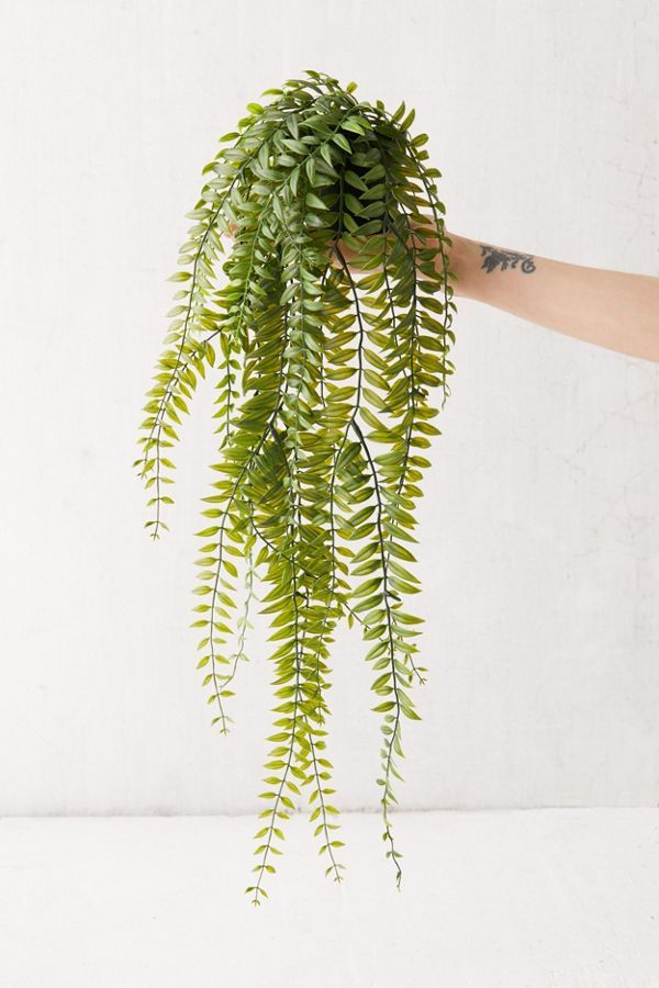 Cascading Fern Faux Plant Faux Plants Hanging Plants Bathroom Plants