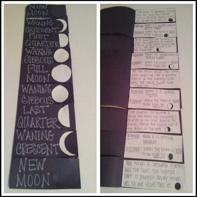 moon phases foldable 5th grade