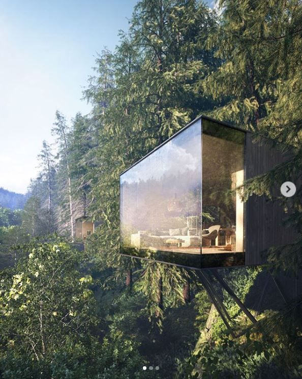 Minimalist Revugia retreat is nestled amidst Germany's Black Forest