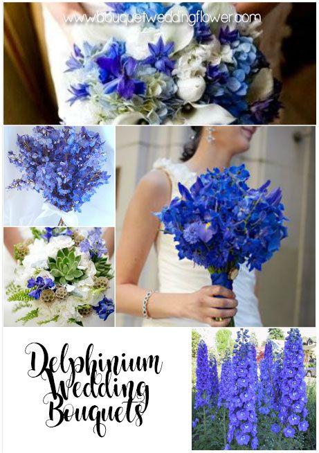 Delphinium blue flowers for a wedding