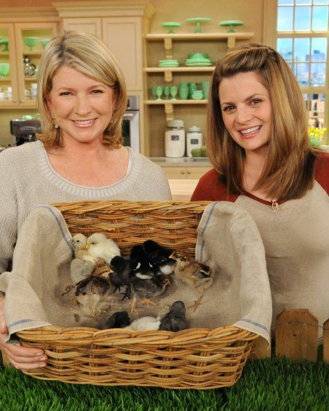 How to Raise Chickens in Your Own Backyard - Martha Stewart Outdoor Living