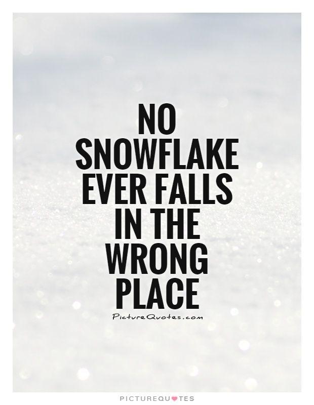 snowflake quotes - Google zoeken