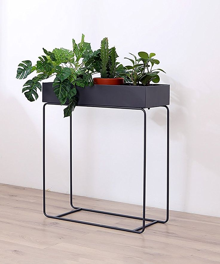 Die besten 25+ moderner Pflanzenständer Ideen auf Pinterest - moderne wohnzimmer pflanzen