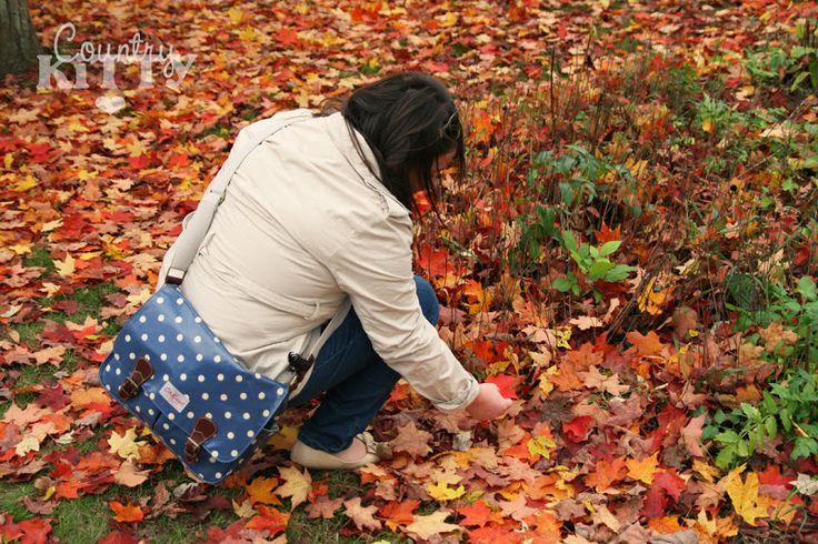 Countrykitty: Новая Англия - часть 3 - Осень в Вермонте