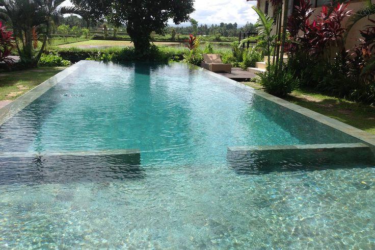 Large infinity pool, Matahari Villas, Ubud
