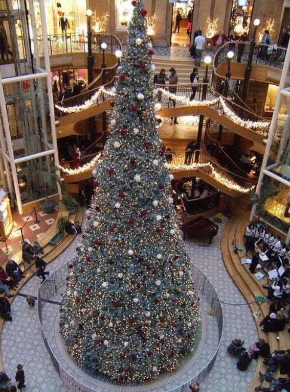Princes Square Glasgow - Princes Square Glasgow Photography Christmas, Scotland, Glasgow