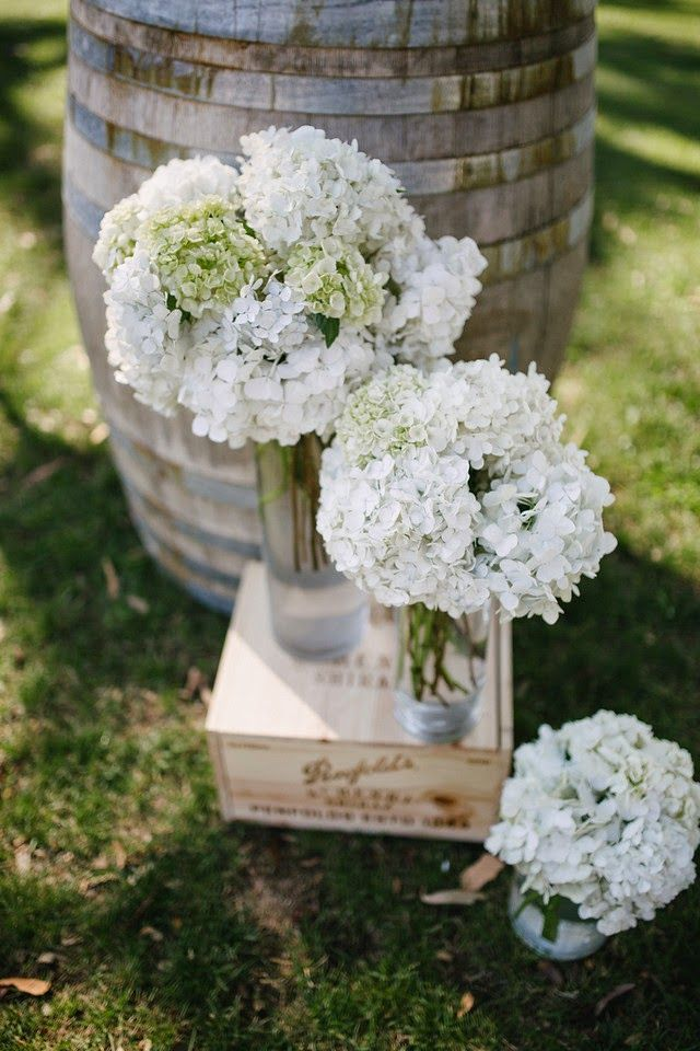 Naomi Rose Floral Design white fluffy hydrangea in vases, staggered in heights. Photography by  www.freethebird.com.au props & styling www.storytimeweddings.com.
