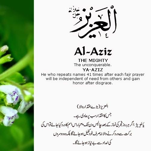 The 99 Beautiful Names of Allah with Urdu and English Meanings: 7- ALLAH names