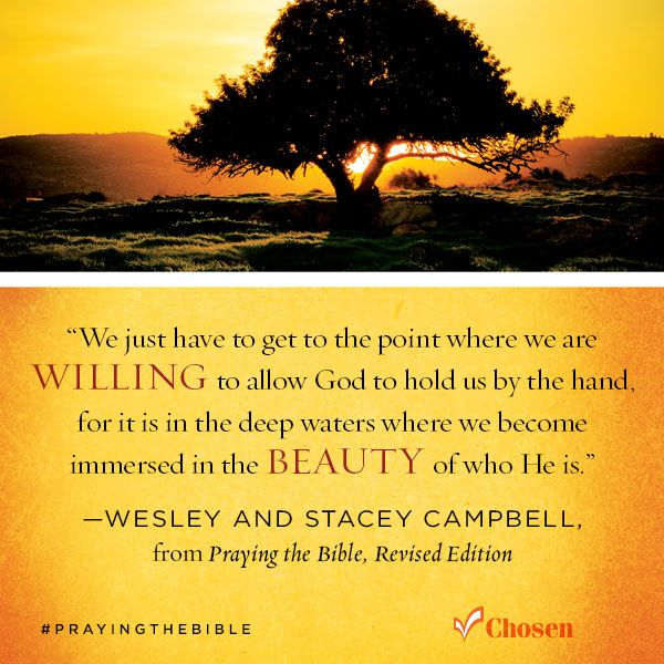 """""""We just have to get to the point where we are WILLING to allow God to hold us by the hand, for it is in the deep waters where we become immersed in the BEAUTY of who He is."""" —Wesley & Stacey Campbell, Praying the Bible, Revised Edition #PrayingTheBible"""