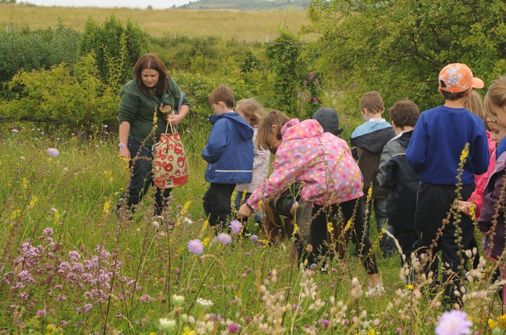 Exploring the meadow on a Sensory Nature Walk at College Lake. Claire (BBOWT)  Photographer: Helen Walsh