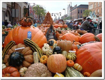 Circleville pumpkin show..