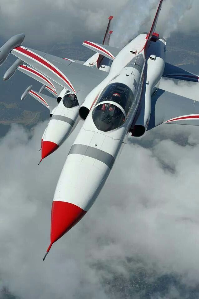 The Turkish Air Force Turkish Stars