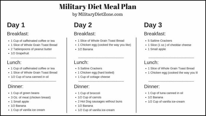 Download SHOPPING LIST & MEAL PLAN for the Military Diet completely for FREE. Thanks to these, you will buy everything you need at once!