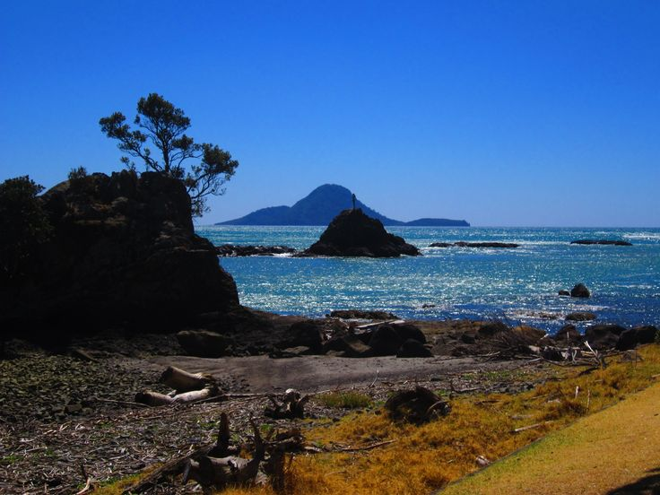Looking out to Whale/Motohora Island