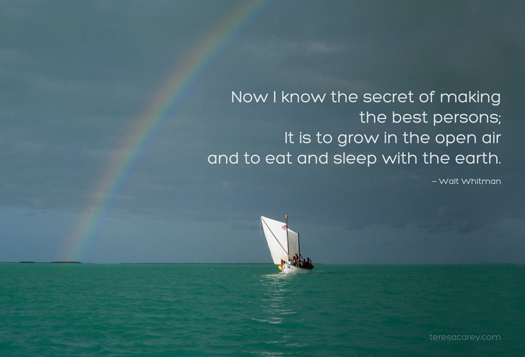 1000+ Images About Sailing Quotes & Inspiration On Pinterest
