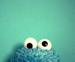 I think I actually love this photo more than Cookie Monster loves cookies!