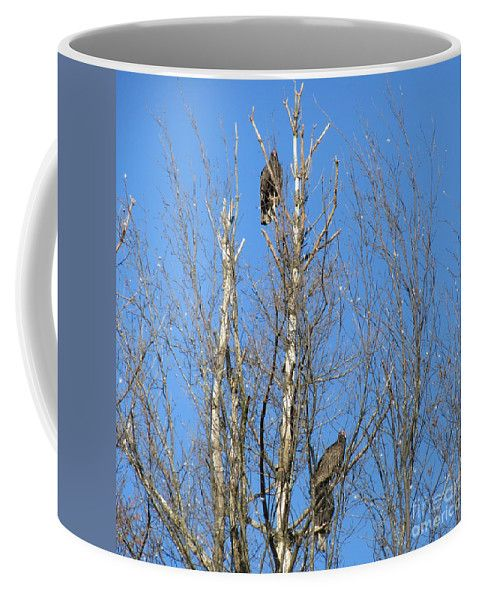 Turkey Coffee Mug featuring the photograph Turkey Vulture Buzzard by Lyssjart Sj