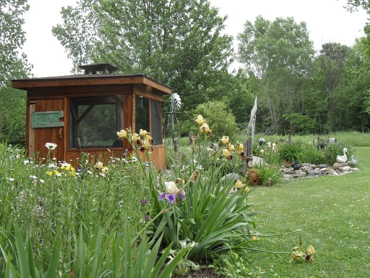 my back yard: Gardens, Back Yard