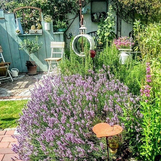 [New] The 10 Best Garden Ideas Today (with Pictures) – Einen wunderschönen Tag wünsche ich euch wir haben heute Nacht im Garten auf der Liege geschlafen um halb vier bin ich ins Bett da wurde es zu kühl.