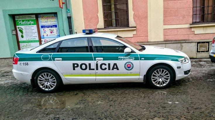 Audi Police car
