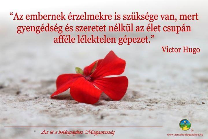 Victor Hugo idézete az érzelmekről. A kép forrása: Az Út a Boldogsághoz Magyarország # Facebook