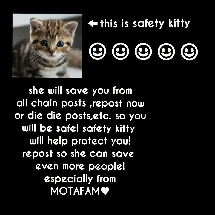 repin!safety kitty will save you! I just pinned it again because the kitty is so cute!