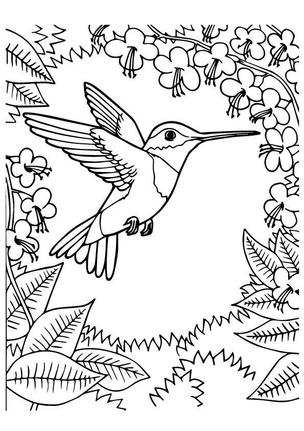 Print Coloring Image Momjunction Leann Bird Coloring