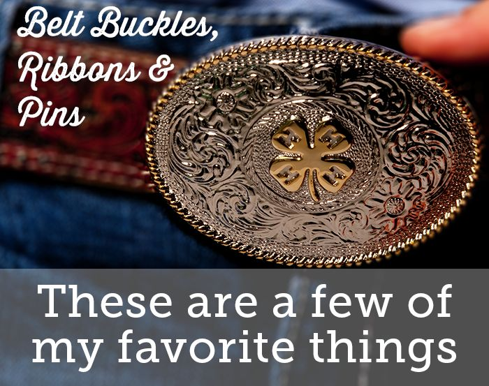 Belt buckles are a big part of life for many 4-H'ers. Need one? Get yours today!