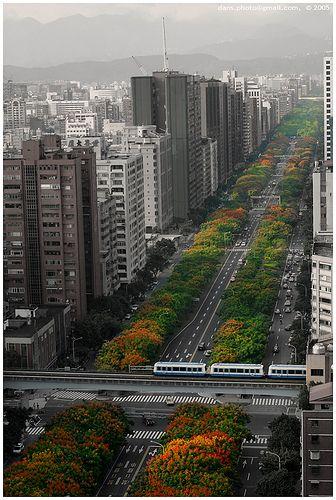 Taipei #Taiwan 台北 台灣