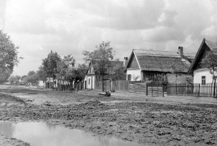 Tápé, utcarészlet - 1930 - ismeretlen fotós  Tápé egykori község Csongrád megyében, ma Szeged városrésze. (Wikipédia)