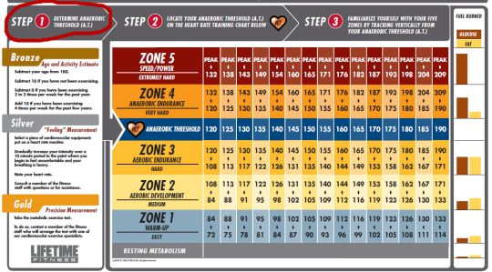 lifetime fitness heart rate training zone chart