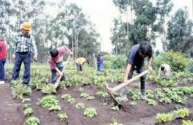 recursos naturales de tumbes: Recursos Naturales del Peru