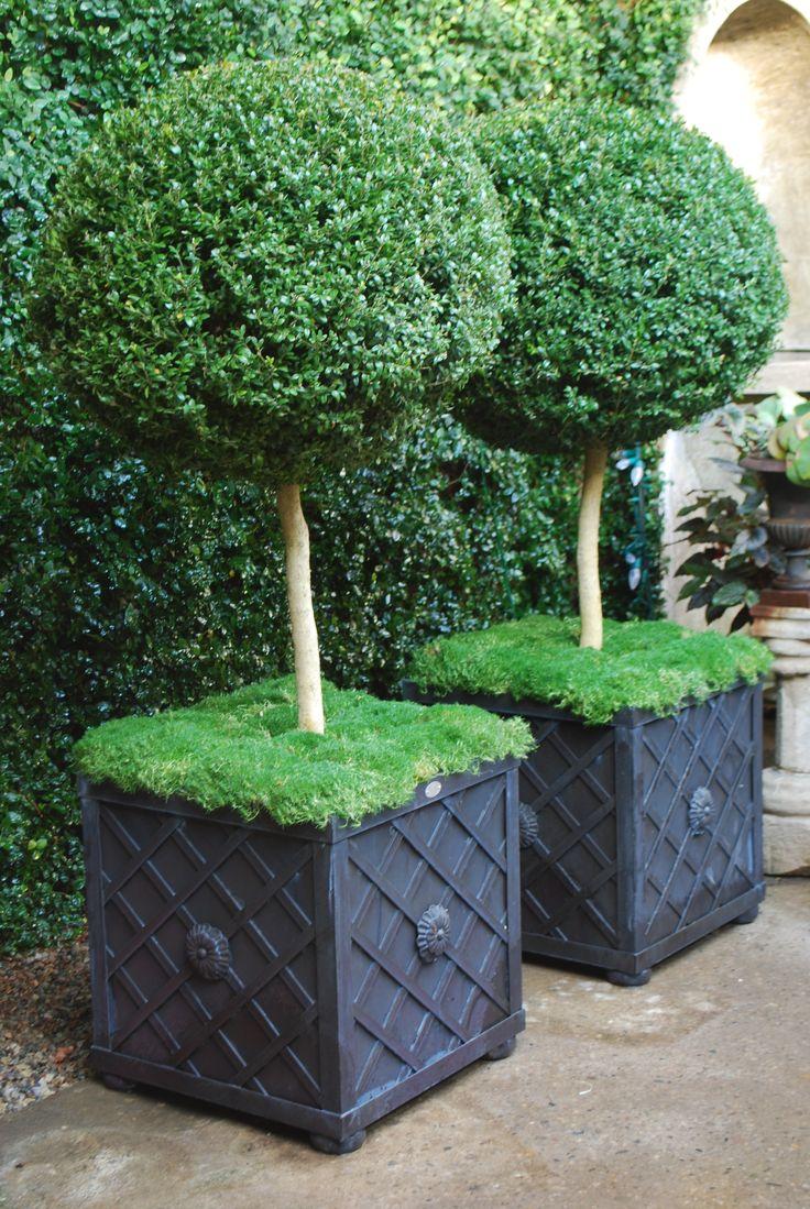 Best 25 Lattice Fence Panels Ideas On Pinterest Fence