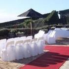 Waiheke Chair & Wedding Cover Hire