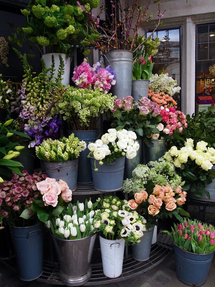 Check out the beautiful flowers at Liberty, wait until Sunday, go and get them 1/4 of the price from Columbia Road :D