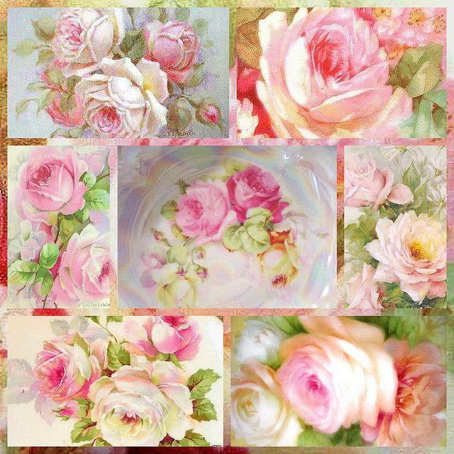 Картинки розы коллаж