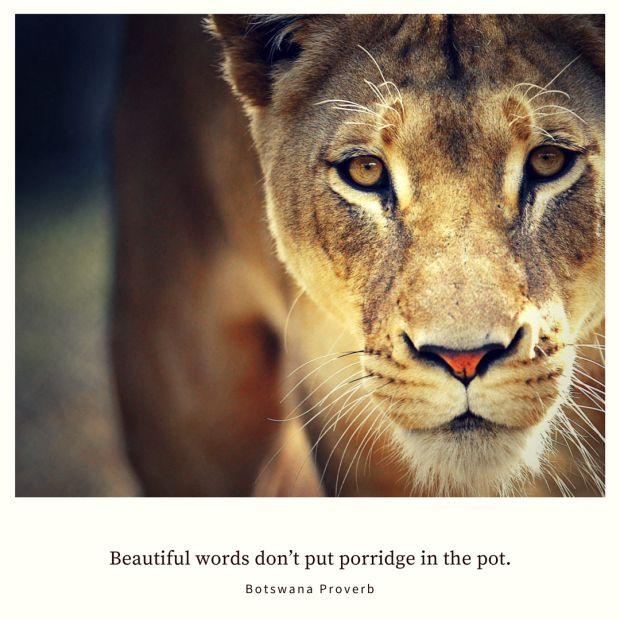 Beautiful words don't put porridge in the pot. – Botswana Proverb