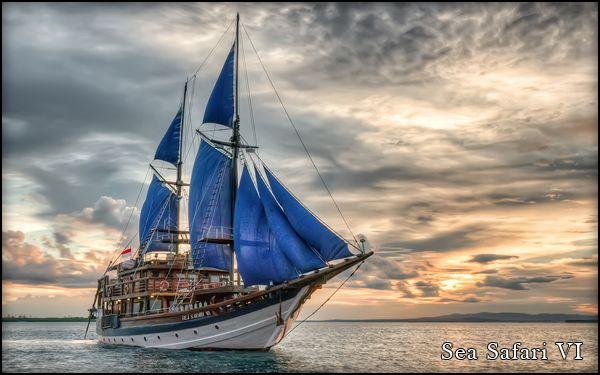 divingseasafari.com - Indonesia Scuba Diving and Liveaboard in Bali, Komodo, Raja Ampat