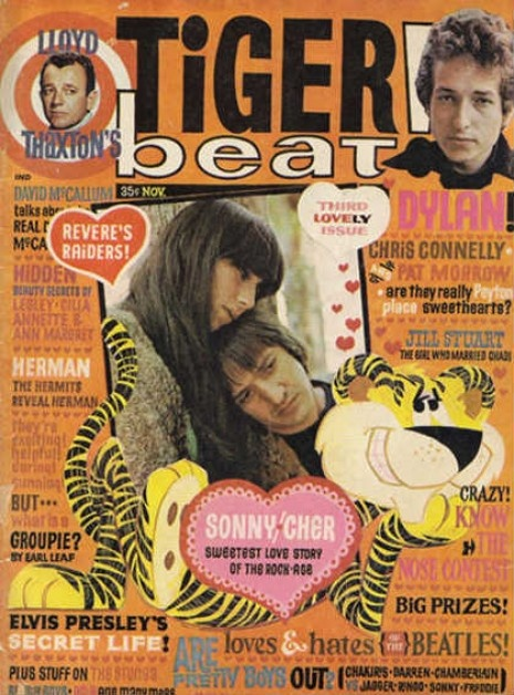 Tiger Beat of the 60's