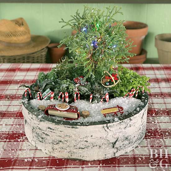 Nothing says happy holidays like a Christmas tabletop fairy garden, complete with a miniature evergreen tree.
