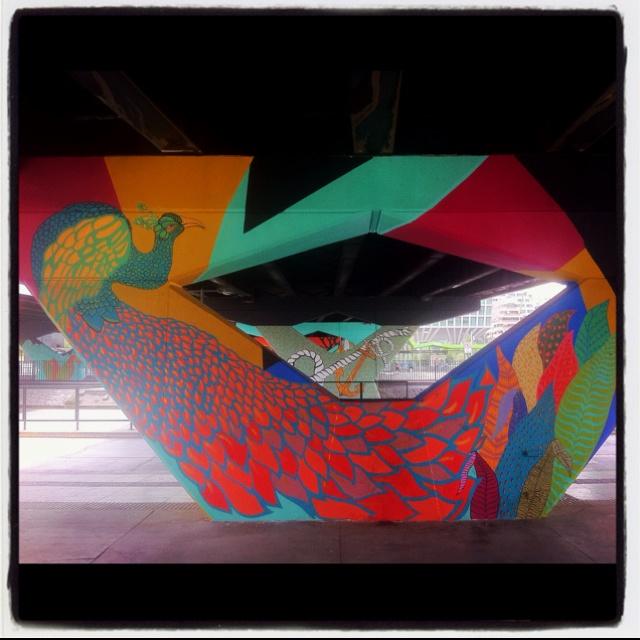 Benetton Peacock @ Escuela Militar