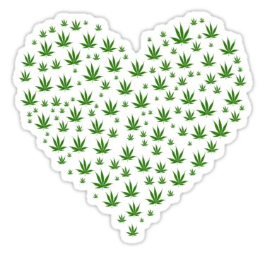 Marijuana leaves in a heart shape by Stock Image Folio