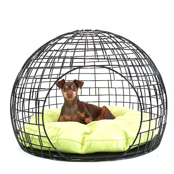 the Coop Pet Home - that is one fab mod pet bed!