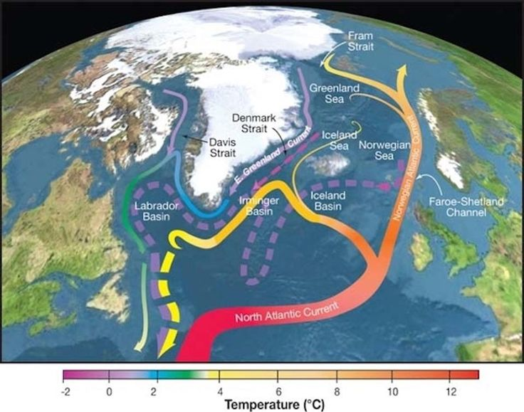 "Scientists have long known about the anomalous ""warming hole"" in the North Atlantic Ocean, an area immune to warming of Earth's oceans."