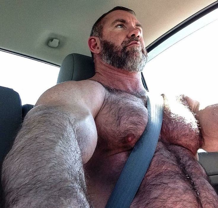 Hairy and Muscled Bearded Bear strapped into the driver's seat!